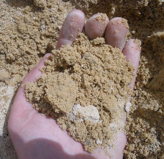 Fort Worth Grass Amp Stone Brick Sand