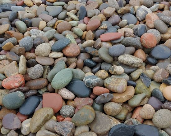 Picture of Rocky Mountain Pebbles